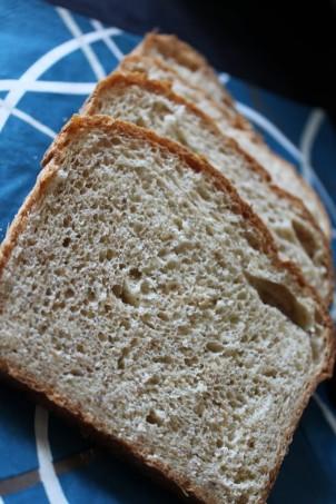 Apple Ginger Bread.