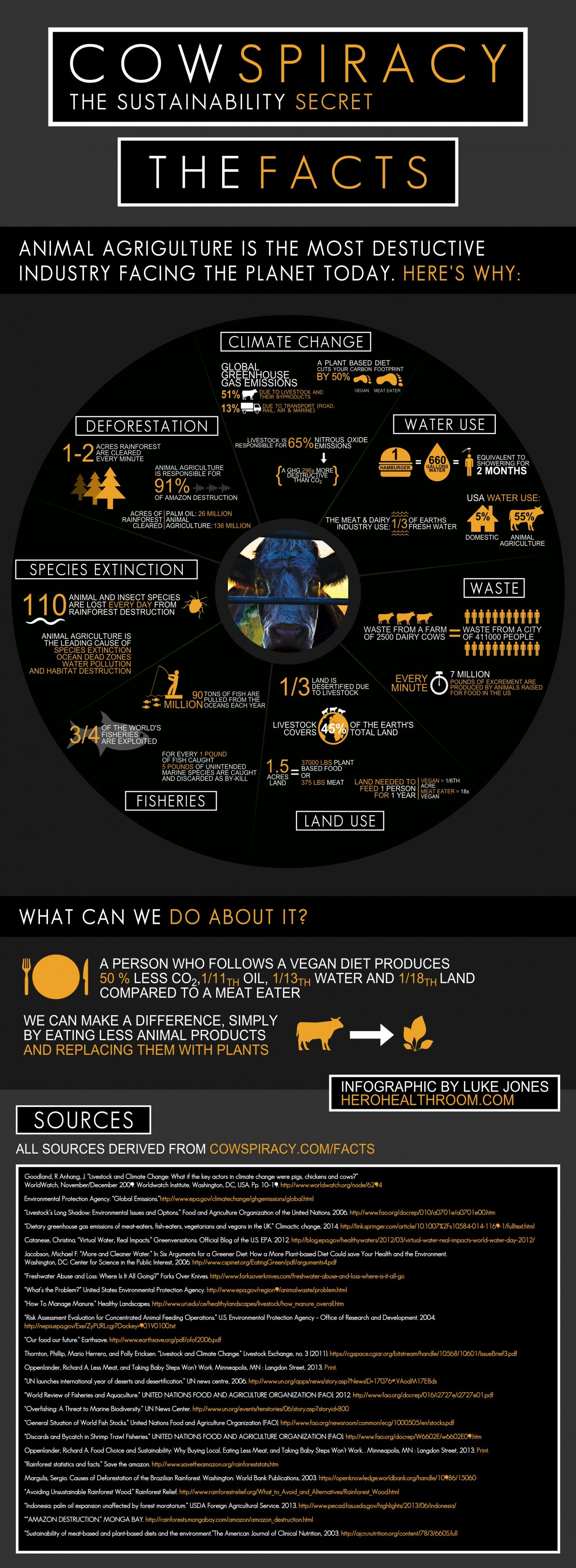 cowspiracy-infographic-why-animal-agriculture-is-the-most-destructive-industry