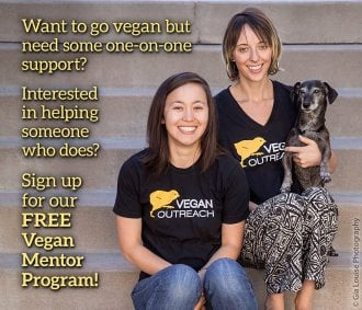 Vegan Outreach Mentorship Program