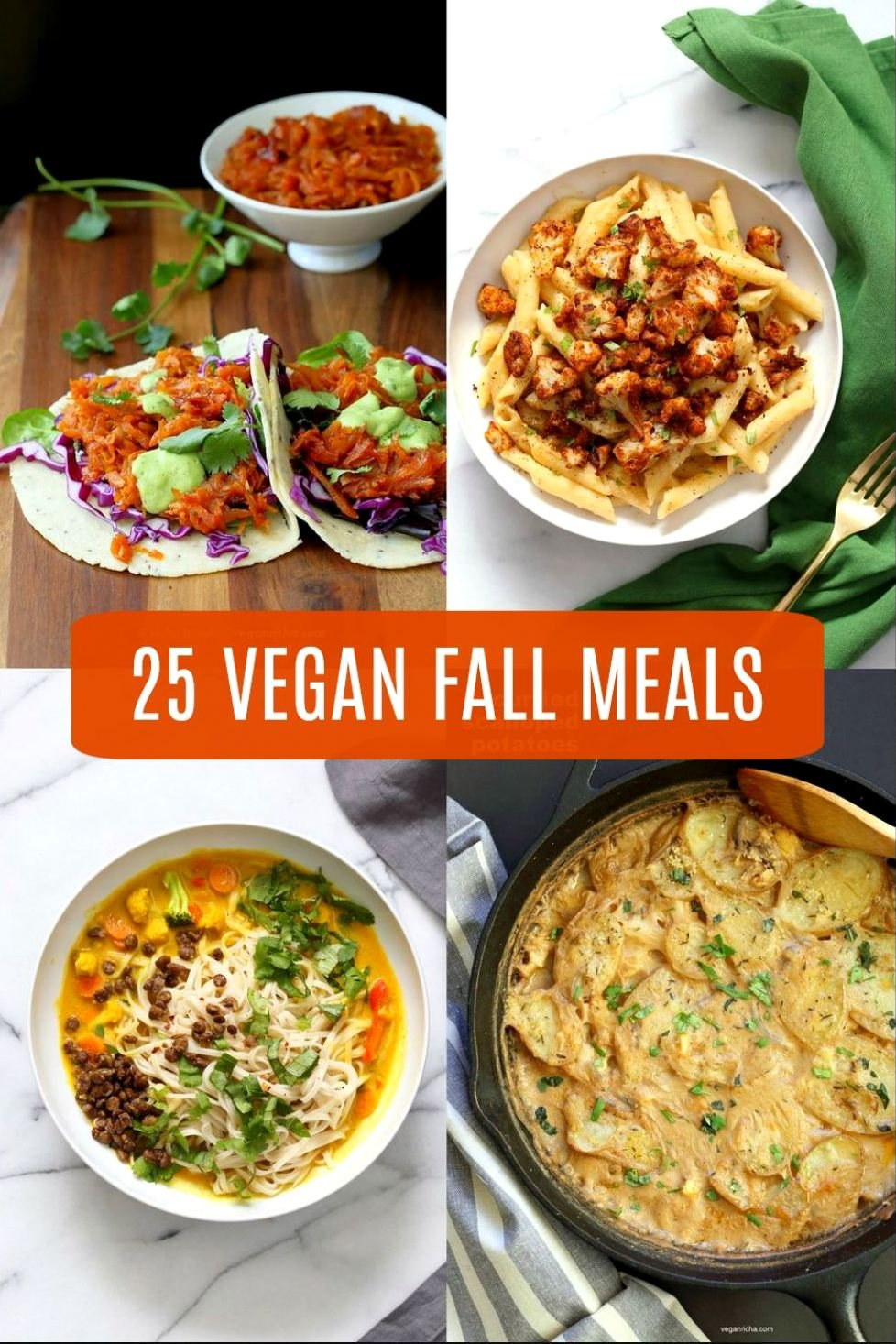 25 Vegan Fall Meals for a chilly day! Casseroles, chilis, gratins, pot pies, soups, and curries. Many are 1 Pot meals. Vegan Fall Recipes. Gluten-free Soy-free options. #veganricha